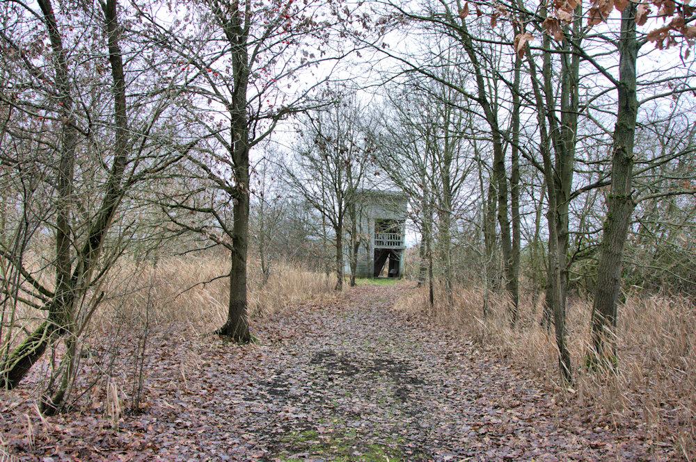Kijktoren Demerbroeken