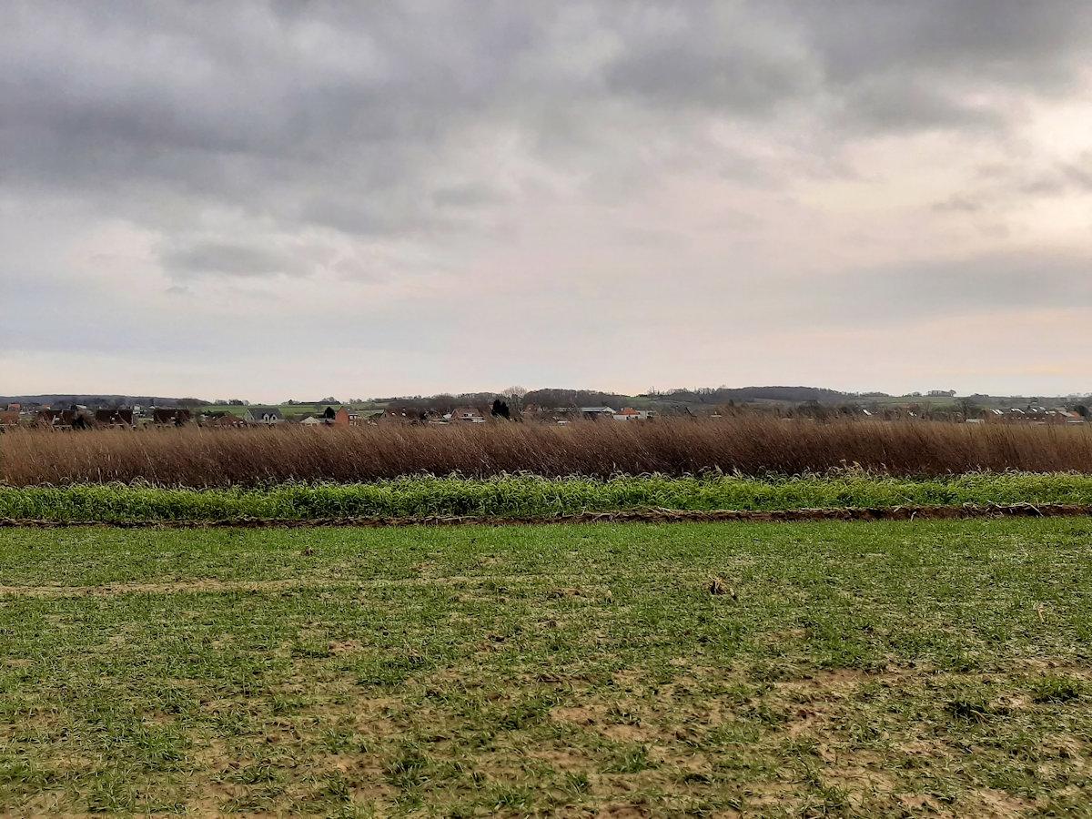wandelen in Kortrijk Dutsel